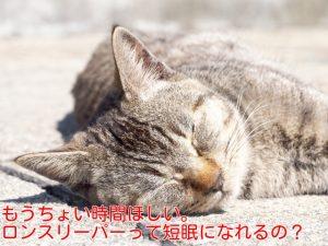 ロングスリーパーは短眠になれるのか?ぶっちゃけ誰でも睡眠時間は短くできます!